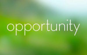 blog theme rotator opportunity
