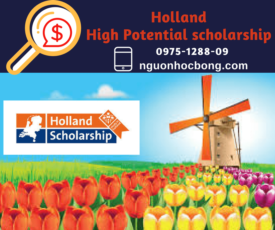 excellence scholarship holland