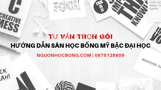 huong dan tim hoc bong du hoc my tron goi