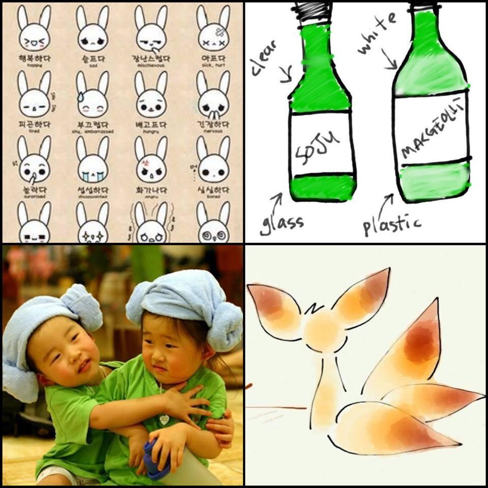 nguonhocbong.com-duhochanquoc14.png