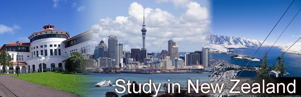 study_newzealand_banner